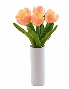 Светильник  СТАРТ   LED Тюльпаны5 розовый