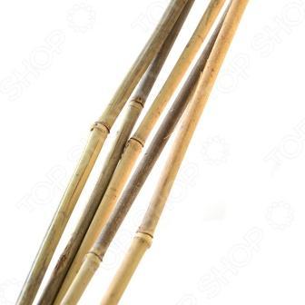 GBS-8-180 GREEN APPLE Поддержка бамбуковая 180см